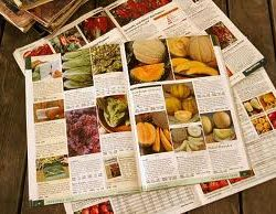 "January is a great time to ""read"" those seed catalogs!"