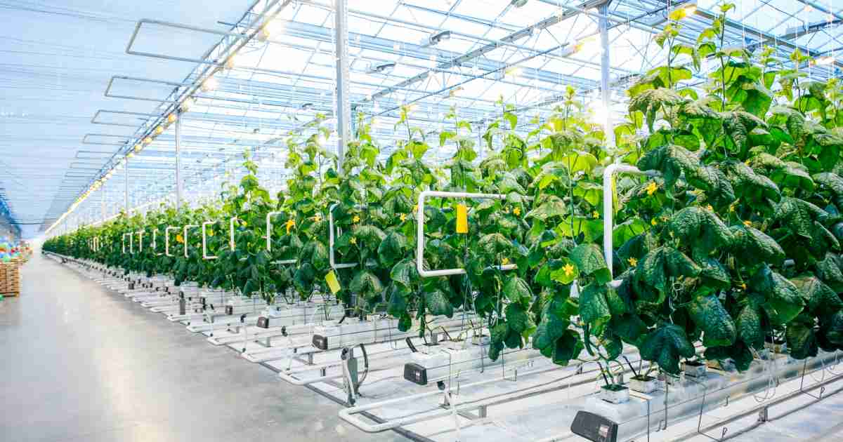 Autonomous Farms And The Future Of High Tech Agriculture