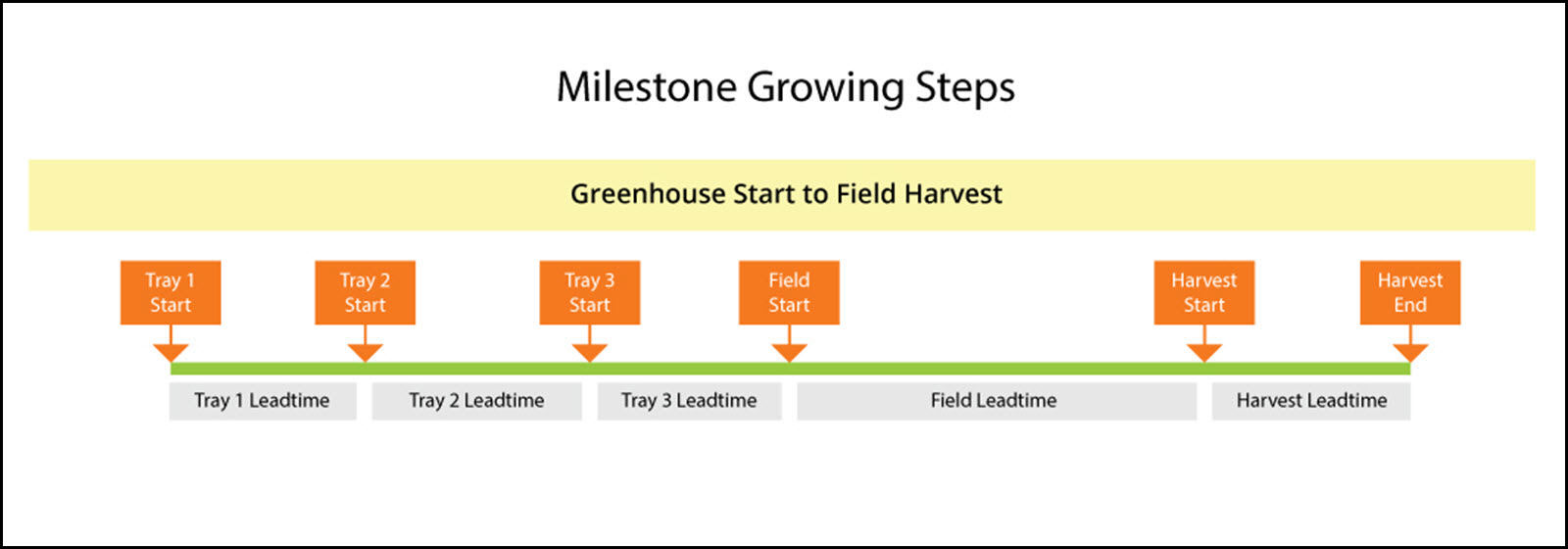 Here is an example of our Market Farming Software, Farm Production Manager's, Milestone Growing steps; it shows potential milestones for direct greenhouse start to field harvest process. Milestone Growing steps simplify scheduling.